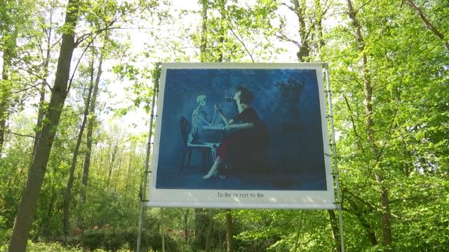 """Ottignies : """"Rêveries subaquatiques"""" d'Harry Fayt au Bois des rêves"""