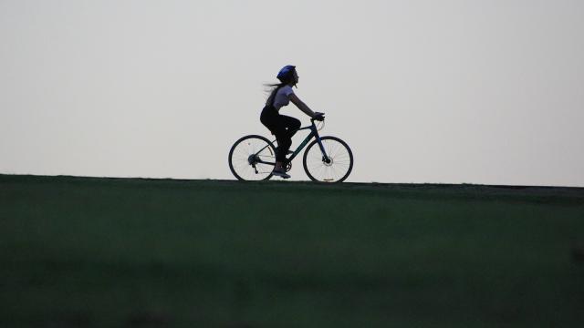 Quelle importance votre entreprise accorde-t-elle à la mobilité?