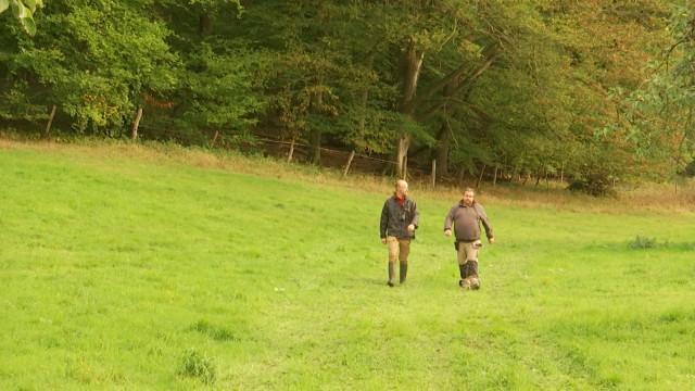 Réserve naturelle de Nysdam : l'importance de collaborer avec un agriculteur