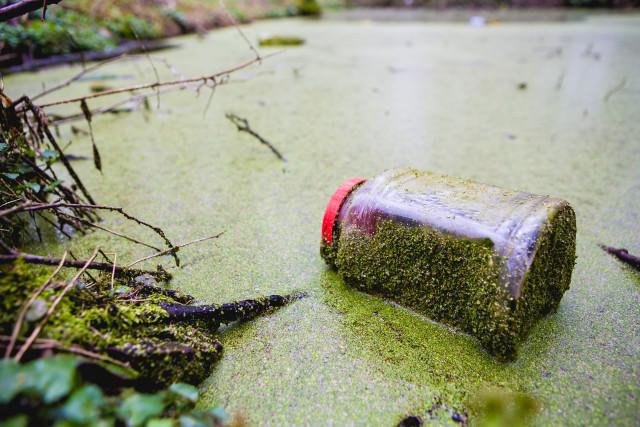 Semaine de la Propreté à Wavre : 9 jours pour apprendre à respecter l'environnement