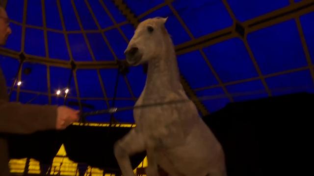 Tempo d'Eole présente son nouveau spectacle équestre