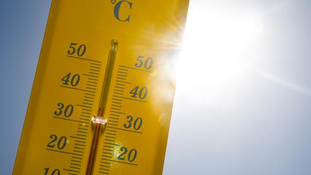 testVague de chaleur : les communes déclenchent le plan canicule !