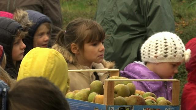 Villers : des élèves pressent des pommes