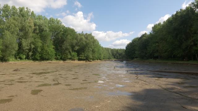 testWaterloo : le bassin d'orage du Bois des Bruyères est vide