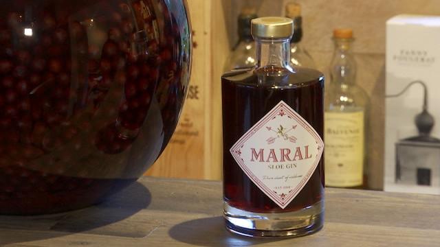 testWaterloo : Maral, le sloe gin artisanal né grâce au confinement